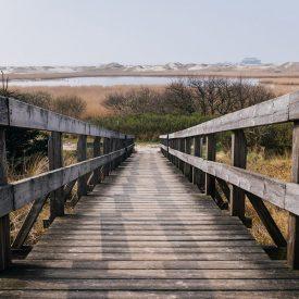 Pathway to Nature